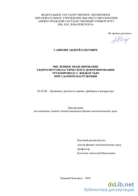 Кочетков анатолий васильевич диссертация 5489