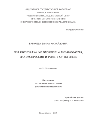 Ген Trithorax-like Drosophila melanogaster, его экспрессия и роль в онтогенезе